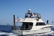 Photo de Le bateau français pour Gaza arraisonné par la marine israélienne