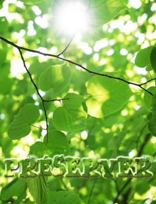 Photo of Environnement : embellir son rapport à la nature