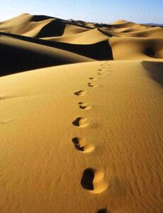 Raconte-moi PSM : La foi, pas à pas