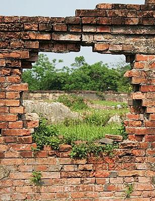 Photo de Sous le mur, un trésor …