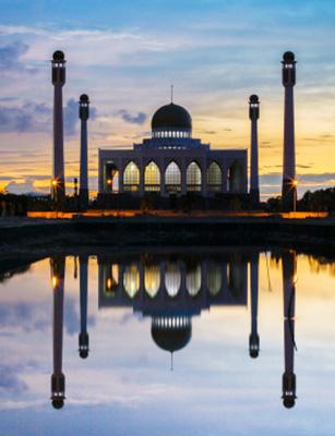 Photo de Les rôles de la mosquée en France